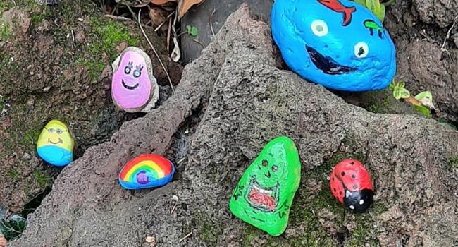 Happy Stones bij VTV